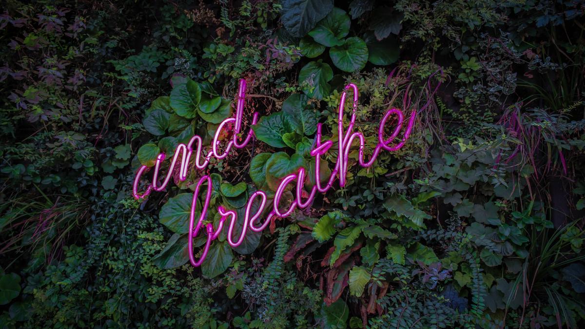 Corso di respiro respirazione Carpi Modena